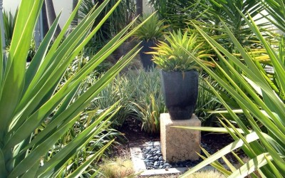 planting_03