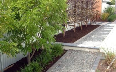 planting_04